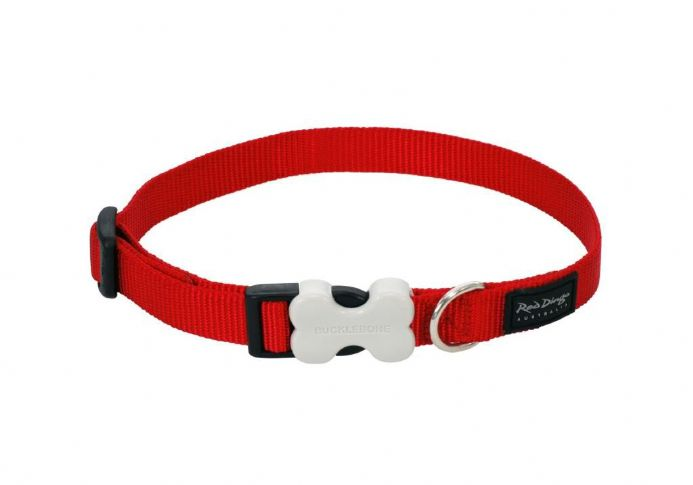 Growler Pets - Red Dingo Dog collar Classic Red